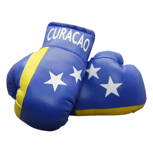 Mini Bokshandschoenen Curacao - jokasport.nl