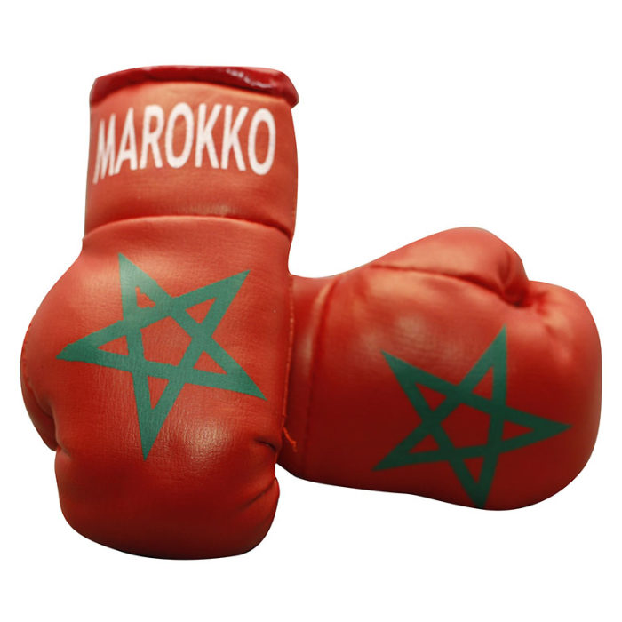 CADEAUTIP - Mini Bokshandschoenen Marokko - Jokasport.nl