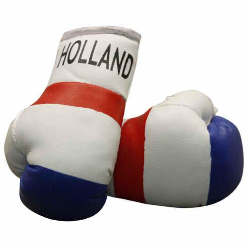 Mini Bokshandschoen Holland - jokasport.nl