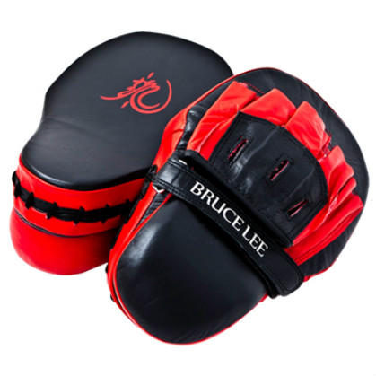 Bruce Lee Dragon Focus Target Mitts Deluxe