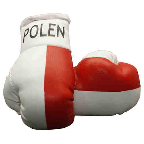 CADEAUTIP - Mini Bokshandschoenen Polen - Jokasport.nl