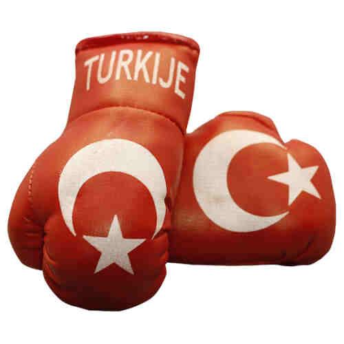 CADEAUTIP - Mini Bokshandschoenen Turkije - Jokasport.nl