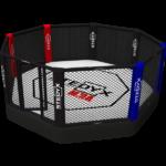 Professionele MMA Kooi (octagon, 40cm vloerhoogte) – jokasport.nl